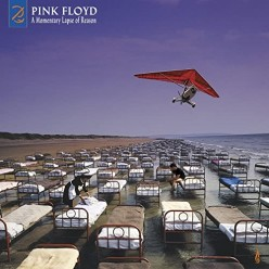 A Momentary Lapse Of Reason [Remixed & Updated]