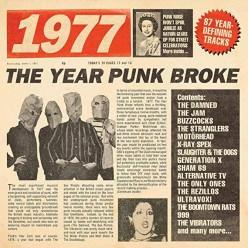 1977 - The Year Punk Broke