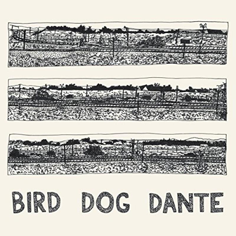 Bird Dog Dante